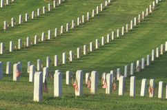 Rows of Gravestones, Los Angeles, California Stock Photos
