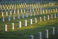 Rows of Gravestones at Sunset Royalty Free Stock Images