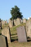Rows of Gravstones. Rows of gravestones in an English Gravsyard Royalty Free Stock Image