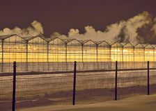 Rows of greenhouses at winter night royalty free stock image