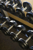 Rows of Hand Weights on Rack Royalty Free Stock Image