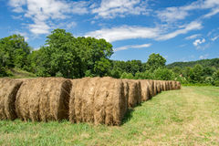 Rows of Hay Bales Stock Photo