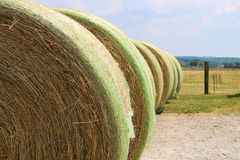 Rows of Hayrolls near Fenced Pasture Royalty Free Stock Photos