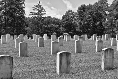 Rows of Headstones at a Veteran's Cemetery I Stock Photo