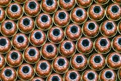 Rows of hollow point bullets - Ammunition. Rows of 308 caliber hollowpoint bullets Royalty Free Stock Photography
