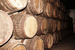 Rows of large oak barrels in a dark cellar. Plant for the produc Royalty Free Stock Images