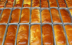 Rows of long loaves Stock Image