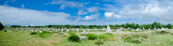 Rows of menhirs in Carnac, bretagne, France Royalty Free Stock Image
