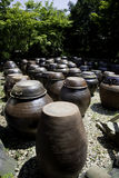 Rows of Mimchi pots in the sun. Stock Images