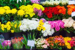 Rows of colorful bouquets in the flower shop. Rows of multi colored bouquets in the flower shop stock photos
