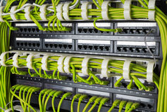 Rows of network cables connected to router and switch hub Royalty Free Stock Photos