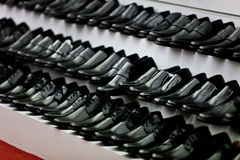 Rows of new leather shoes Stock Image