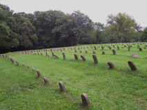 Rows of numbered graves. The graveyard of an abandoned mental asylum in Bartonville, Illinois. (Peoria State Hospital Royalty Free Stock Photos
