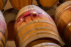 Rows of oak wine barrels in a winery cellar Royalty Free Stock Photography