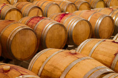 Rows of oak wine barrels in a winery cellar Royalty Free Stock Photos
