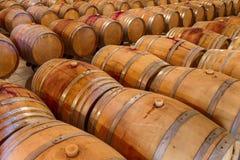 Rows of oak wine barrels in a winery cellar Stock Image