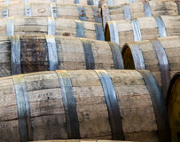 Rows of Old Bourbon Barrels royalty free stock images