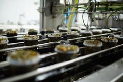 Production of seaweed salad. Rows of plastic containers with fresh seaweed salad on moving production line Stock Images