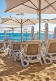 Rows of plastic reclining chairs / lounge recliners / sunbeds on a golden sandy beach royalty free stock images