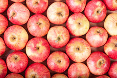 Rows of red apples on a wooden surface. Top View Stock Photography