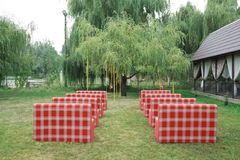 Rows of red empty chairs on a lawn Stock Photography