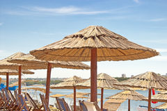 Rows of reed umbrellas and deck chair Stock Images