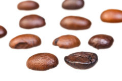 Rows from roasted coffee beans Stock Photo
