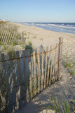 Rows of sand dune fences perspective to infinity portrait. Stock Images