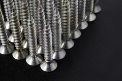 Rows of Screws. Countersunk screws standing vertically in rows Royalty Free Stock Photography