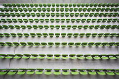 Rows of seats in empty stadium. Royalty Free Stock Photography