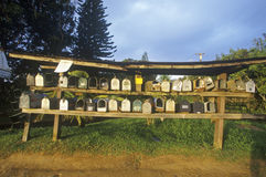 Rows and shelves of residential mailboxes, rural setting Maui, Hawaii Royalty Free Stock Photography