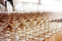 Rows of shiny empty high glasses Royalty Free Stock Photos