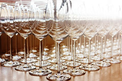 Rows of shiny empty high glasses Stock Image
