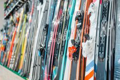 Rows of skis in sports shop, closeup, nobody. Winter extreme, active leisure, showcase with equipment royalty free stock image