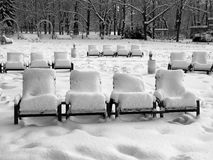 Rows of snow-covered park-chairs Royalty Free Stock Photos