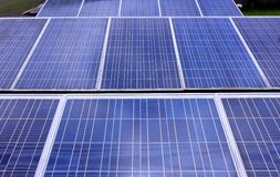 Rows of Solar Panels Royalty Free Stock Photo
