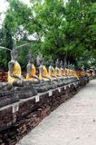 Rows of statues in bangkog Stock Image