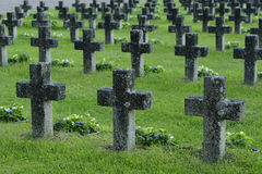 Rows of stone crosses in a military cemetery Stock Photo