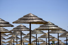Rows of straw umbrellas Royalty Free Stock Photography