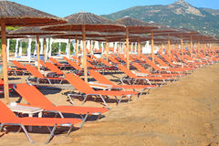 Rows of straw umbrellas Stock Images