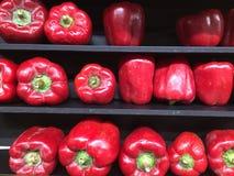 rows tomater arkivbilder