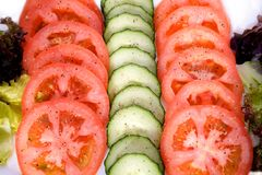 Rows tomato and cucumber Royalty Free Stock Images