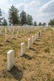 Rows of tombstones in Little Bighorn Battlefield National Monument Royalty Free Stock Image