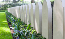 Rows of tombstones Stock Image