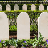 Rows of tombstones Stock Photography