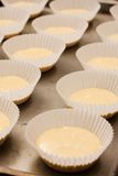 Rows of unbaked cup cakes lined up. Rows of raw dough cup cakes lined up on a backing tray before going into the oven Royalty Free Stock Images