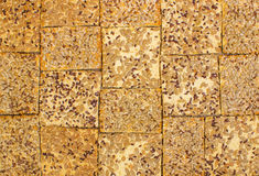 Rows of various shortbread and oat cookies. royalty free stock images