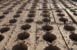 Rows of vertical bricks Stock Photos