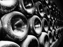 Rows of vine bottles Royalty Free Stock Photography