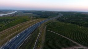 Rows of vineyard before harvesting. In Dobrogea, Romania Europe, aerial view from drone, Highway crossing the fields royalty free stock photo